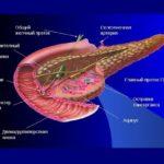 Виды и классификация панкреатита поджелудочной железы