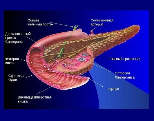 Классификация панкреатита